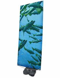 Storm Hydro 2 outdoor tension banner